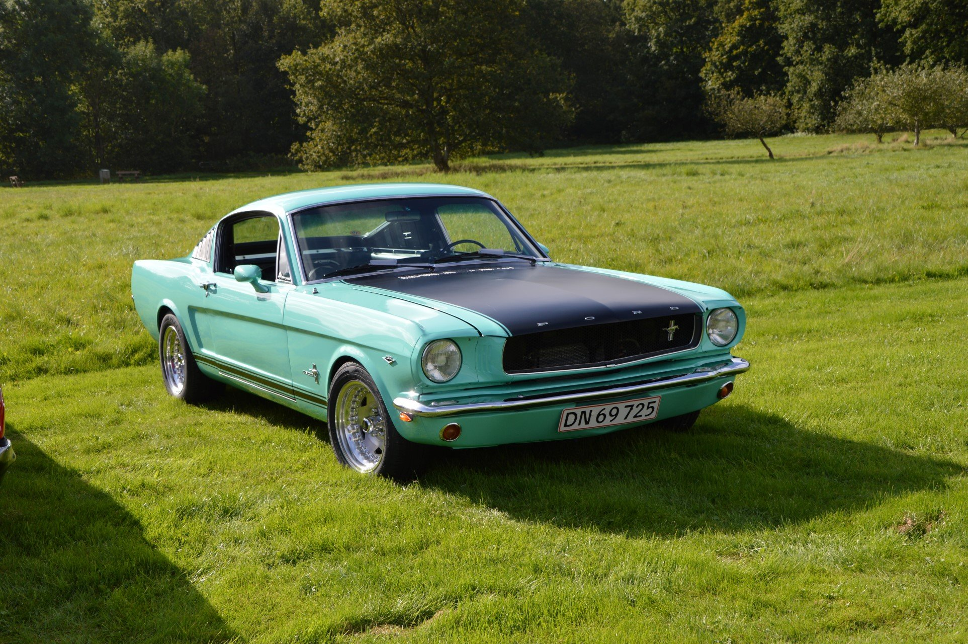 1965-ford-mustang-fastback-042